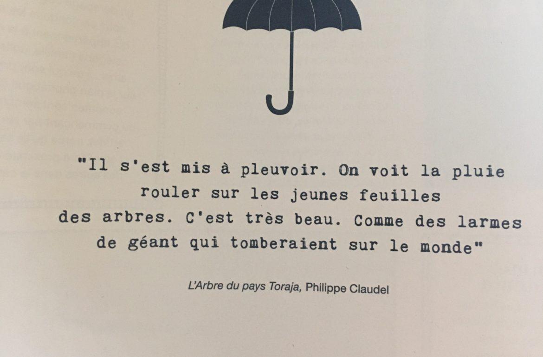 ©duventdans mes valises - pluie d'été